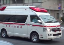 Японская полиция арестовала 34-летнего рабочего Йошиюки Йошиду за непреднамеренное убийство своего коллеги Акио Исимару