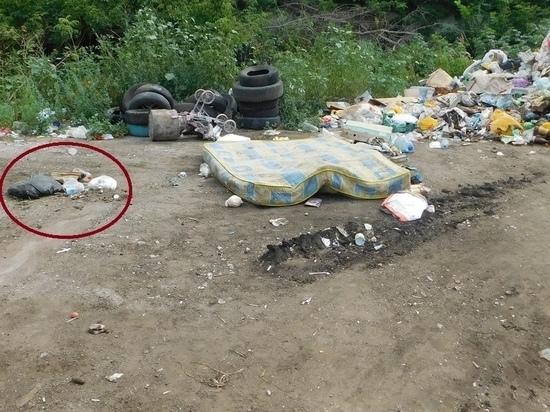 Тамбовские следователи ищут женщину, которая оставила младенца в куче с мусором