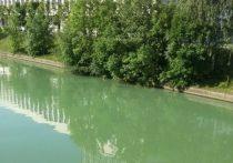 Из-за жары в городе зеленеют реки