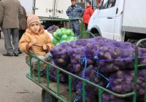 В Башкирии подорожали картошка и курятина
