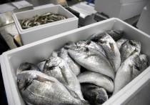 Федеральная служба безопасности России поставила в известность рыболовов о недопустимости промысла на принадлежащих иностранцам судах