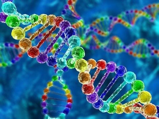 Человечество - это одна большая генетическая семья