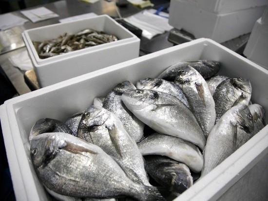 Цена нарыбу повысится из-за требований ФСБ