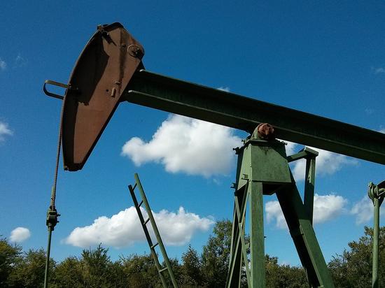 Падение нефти обрадовало спекулянтов