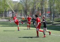 Более десяти школ футбола существует в Нижнем Новгороде
