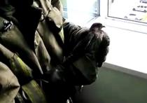 Подмосковные спасатели вызволили из лап кондиционера сокола-пустельгу