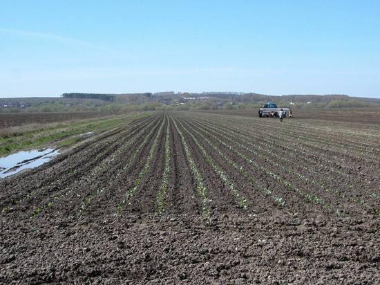Россия выплатит почти 2,5 миллиона евро молдавским фермерам по решению ЕСПЧ