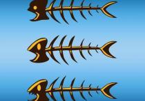 Международная группа исследователей из Китая и США выяснила, что употребление в пищу рыбы позволяет заметно уменьшить риск ранней смерти