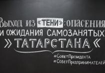 Самозанятые татарстанцы назвали условия своей легализации