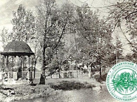 В Ботаническом саду Твери хотят воссоздать старинную ротонду