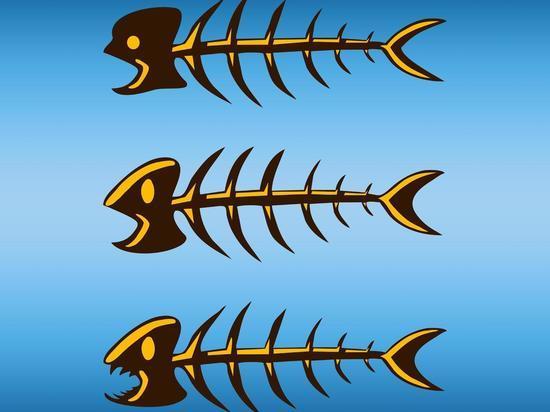 Жареная рыба убивает, а вареная — спасает жизнь, показало крупное исследование