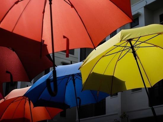 Модные тендеры органов власти: закупаются зонтики и дождевики