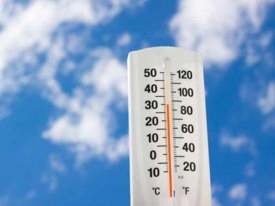 Синоптики рассказали, когда в Москву придет 30-градусная жара