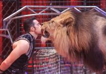 Воздушные гимнансты, акробаты, львы и тигры:  на арене цирка Charles Knie во Франкфурте