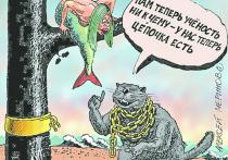 Что заставляет деградировать высшее образование Кубани и России