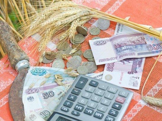 Число получателей субсидий среди аграриев в Оренбуржье может заметно уменьшиться