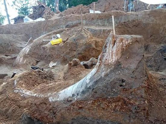 Раскопки в Оханском районе принесли новую сенсацию
