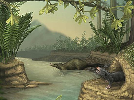 Останки двух млекопитающих, заставших динозавров, найдены в Сибири
