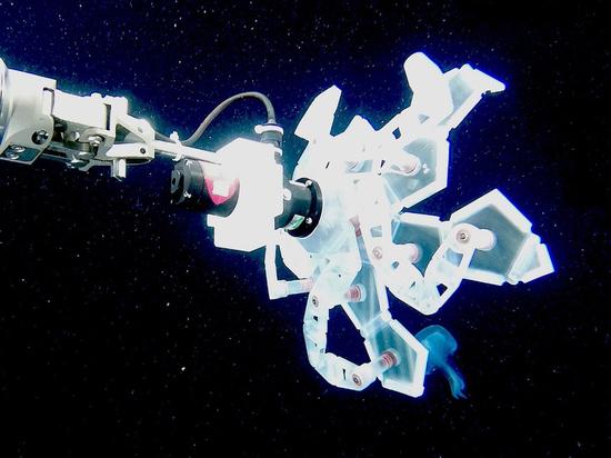 Ученые из Гарварда изобрели глубоководного робота-охотника