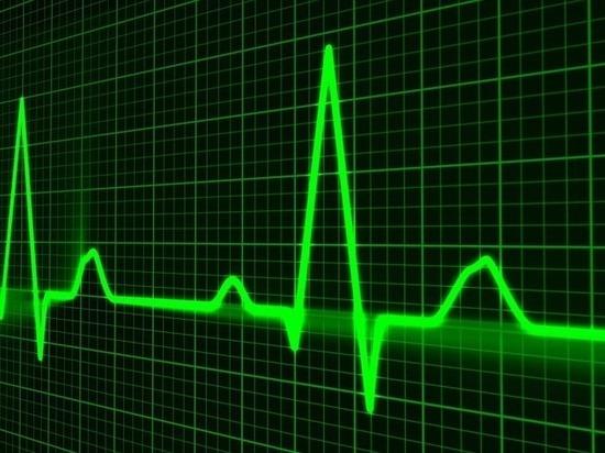 Межрайонные онкослужбы и новая кардиология: что ждет здравоохранение Карелии