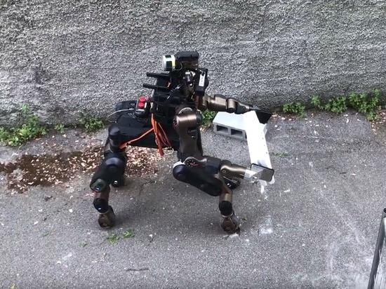 Европейские инженеры сняли на видео робота-кентавра