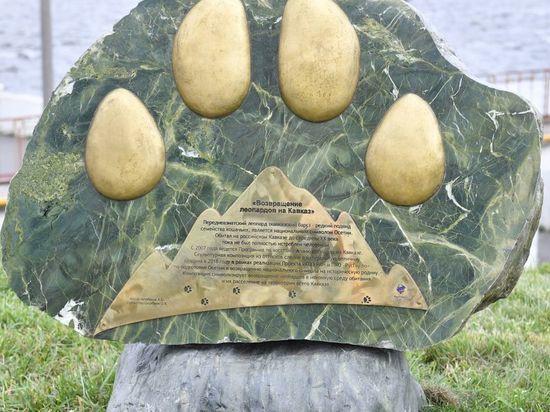 Популяцию леопардов восстанавливают в Северной Осетии