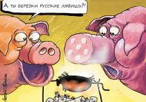 Эксперты поспорили с Минсельхозом о вкусной и здоровой пище