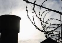 Экс-чиновника в Мордовии осудили за серию мошенничеств