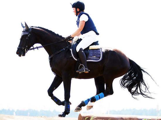 В Химках состоялся турнир по конному поло