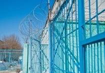 Волгоградка проведет более полутора лет в тюрьме за избиение и вымогательство