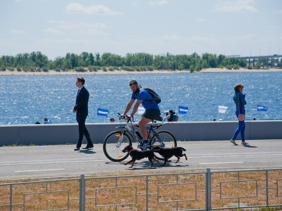 В центре Волгограда появилась новая велодорожка