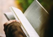 Как написать книгу так, чтобы читатель взахлеб зачитывался ей? Этот вопрос волнует многих известных авторов, ему посвящен не один бестселлер
