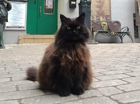 Издома Булгакова в столицеРФ украли кота Бегемота