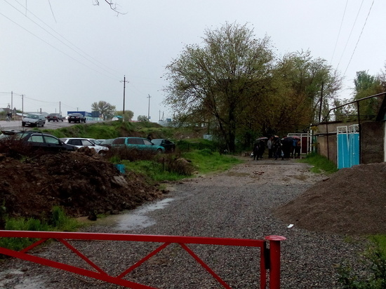 В Южно-Казахстанской области родственники перестреляли друг друга во время буйного совместного торжества