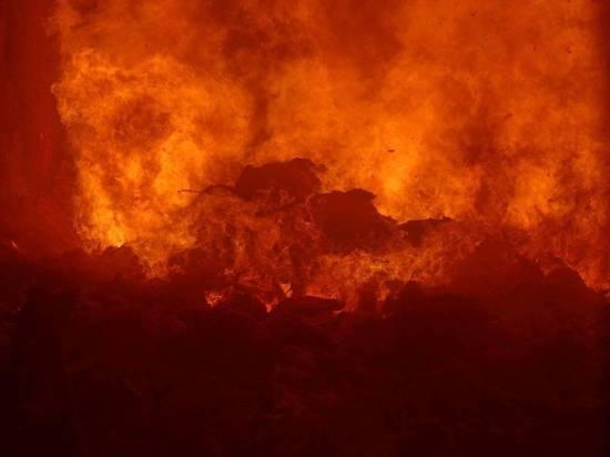 Переработать или сжечь. Как устроен мусоросжигательный завод