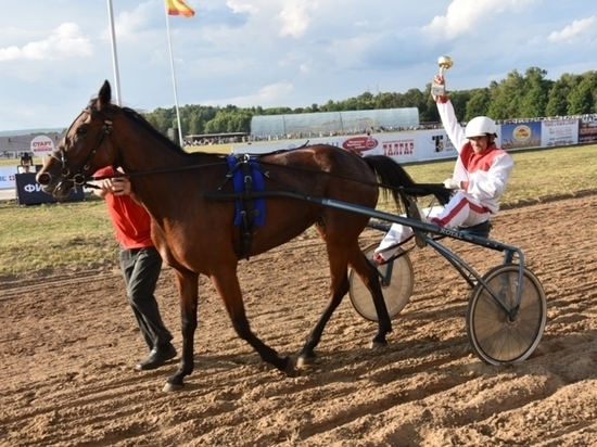 За кубок Чувашии соперничала 21команда лошадей и наездников