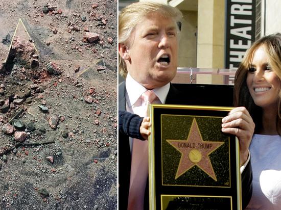 Звезда Трампа может пропасть с Аллеи славы в Голливуде