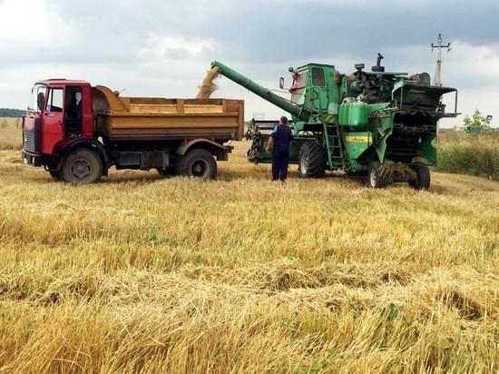 В Серпуховском районе стартовала уборка зерновых культур