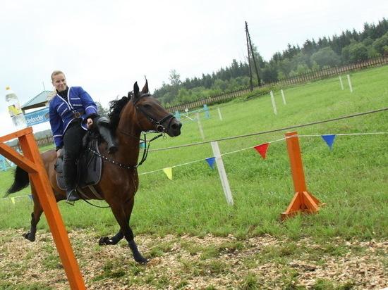 Частную конюшню содержали на деньги Серпуховского района