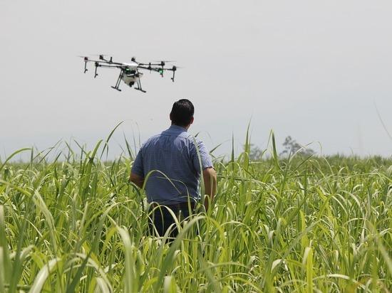 В Башкирии учет сельхозугодий ведут квадрокоптеры