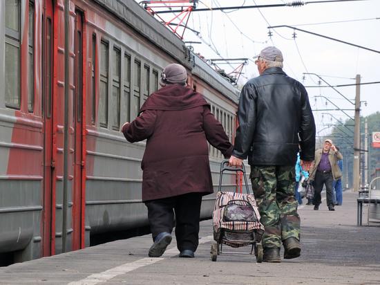 Референдум по пенсионной реформе доверили блогеру и директору музея трезвости