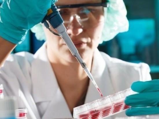 В Костромской области проводится комплекс мероприятий по недопущению распространения птичьего гриппа