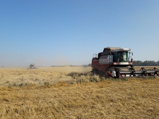 В Тульской области нарастает темп уборки зерна
