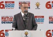 Эрдоган заявил, что США вынуждают Турцию искать новых союзников