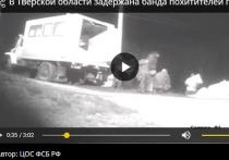 В Тверской области железнодорожная воровская банда похищала грузы