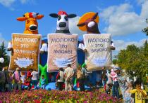 Лучшие молочные продукты Сибири определят в Алтайском крае