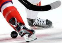 В Тамбове состоится Кубок главы администрации области по хоккею