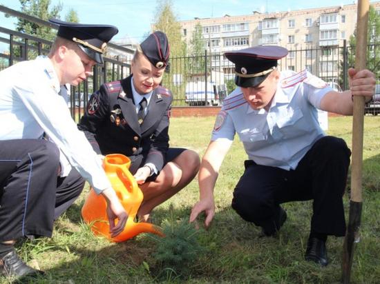 В Нее молодые полицейские высадили аллею сортовых елей