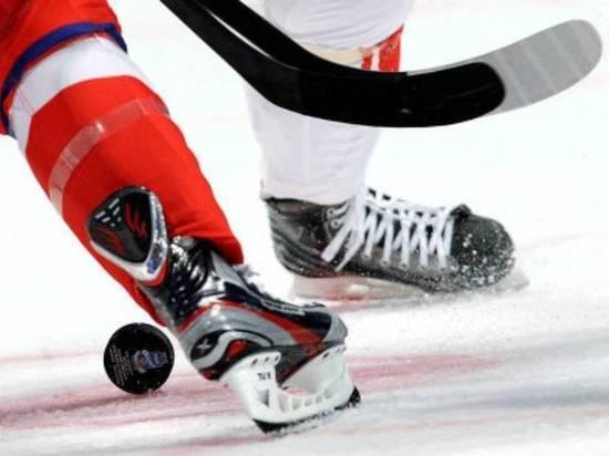 Вход нахоккейные матчи закубок губернатора сделают свободным