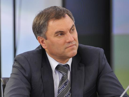 Володин допустил отмену государственных пенсий: «Вот такая дыра»
